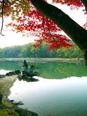 2013日本東北紅葉鐵腿行Day7鳴子峽→平泉中尊寺、毛越寺:P1160010.jpg