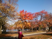 2013日本東北紅葉鐵腿行_手機上傳:1383710890886.jpg