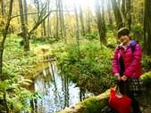 2013日本東北紅葉鐵腿行Day2 奧入瀨溪→十和田湖:P1120925.JPG