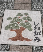 2014日本四國浪漫之旅day2高松→小豆島:P1170794.JPG