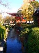 2013.12月東京生日之旅DAY1:P1160741.JPG