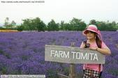 2014夏‧北海道家族之旅DAY2富良野→富田農場:10488005_828894763788737_2602605574770320569_n.jpg