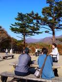 2013日本東北紅葉鐵腿行Day7鳴子峽→平泉中尊寺、毛越寺:P1150701.JPG