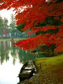 2013日本東北紅葉鐵腿行Day7鳴子峽→平泉中尊寺、毛越寺:P1160067.jpg
