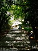 2014日本四國浪漫之旅DAY6松山城→道後溫泉周邊:P1180888.JPG