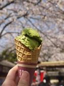 2013春賞櫻8日行***DAY3 醍醐寺→金閣寺→平野神社:1541713112.jpg