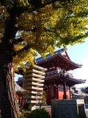 2013.12月東京生日之旅DAY1:P1160754.JPG