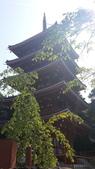 2014初夏四國浪漫之旅day4 高知城→桂濱:20140519_145043.jpg