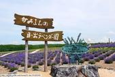 2014夏‧北海道家族之旅DAY3彩香之里、日出公園、美瑛:P1200477.JPG