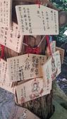 2014初夏四國浪漫之旅day4 高知城→桂濱:20140519_145237.jpg