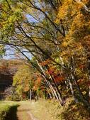 2013日本東北紅葉鐵腿行Day7鳴子峽→平泉中尊寺、毛越寺:P1150854.JPG