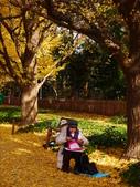 2013東京生日之旅DAY3 外苑→明治神宮→代官山→自由之丘:P1170404.JPG