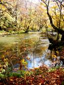 2013日本東北紅葉鐵腿行Day2 奧入瀨溪→十和田湖:P1120856.JPG