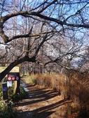 2013東京生日之旅DAY2 日光→宇都宮:P1160973.JPG