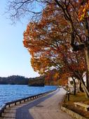 2013日本東北紅葉鐵腿行Day2 奧入瀨溪→十和田湖:P1130069.JPG