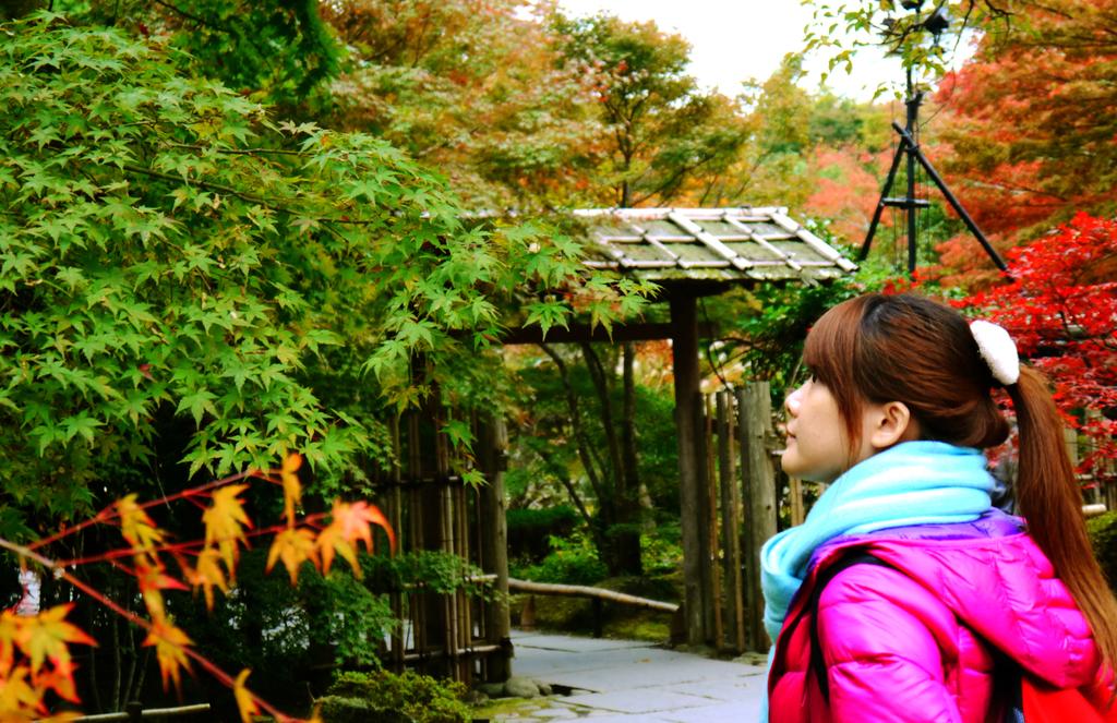 2013日本東北紅葉鐵腿行Day8松島→台灣:P1160615.JPG