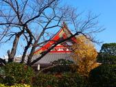2013.12月東京生日之旅DAY1:P1160747.JPG