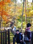 2013日本東北紅葉鐵腿行Day7鳴子峽→平泉中尊寺、毛越寺:P1150848.JPG