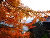 2013日本東北紅葉鐵腿行Day6山寺→鳴子溫泉鄉:P1150182.JPG