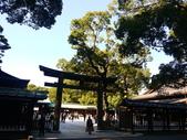 2013東京生日之旅DAY3 外苑→明治神宮→代官山→自由之丘:P1170459.JPG