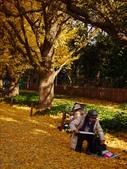 2013東京生日之旅DAY3 外苑→明治神宮→代官山→自由之丘:P1170403.JPG