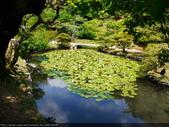 2014日本四國浪漫之旅DAY6松山城→道後溫泉周邊:P1180947.JPG