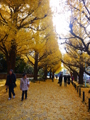 2013東京生日之旅DAY3 外苑→明治神宮→代官山→自由之丘:P1170381.JPG