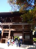 2013東京生日之旅DAY3 外苑→明治神宮→代官山→自由之丘:P1170518.JPG