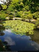 2014日本四國浪漫之旅DAY6松山城→道後溫泉周邊:P1180950.JPG