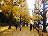 2013東京生日之旅DAY3 外苑→明治神宮→代官山→自由之丘:P1170380.JPG
