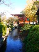 2013.12月東京生日之旅DAY1:P1160742.JPG