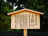 2014初夏日本四國浪漫之旅day3金刀比羅宮→高知:P1180206.JPG