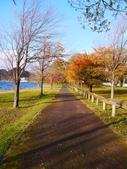 2013日本東北紅葉鐵腿行Day2 奧入瀨溪→十和田湖:P1130024.JPG