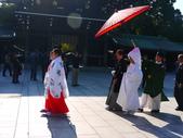 2013東京生日之旅DAY3 外苑→明治神宮→代官山→自由之丘:P1170497.JPG