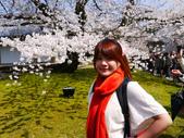 2013春賞櫻8日行***DAY3 醍醐寺→金閣寺→平野神社:1541713125.jpg