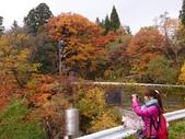 2013日本東北紅葉鐵腿行_手機上傳:1383606148596.jpg