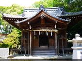2014日本四國浪漫之旅DAY6松山城→道後溫泉周邊:P1180967.JPG
