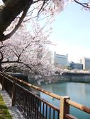 **春賞櫻8日行***Day8 大阪城→台灣:1230550002.jpg
