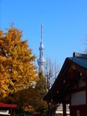 2013.12月東京生日之旅DAY1:P1160733.JPG