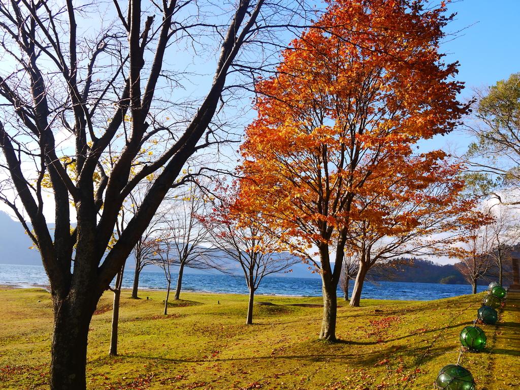 2013日本東北紅葉鐵腿行Day2 奧入瀨溪→十和田湖:P1130017.JPG