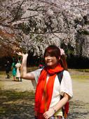 2013春賞櫻8日行***DAY3 醍醐寺→金閣寺→平野神社:1541713093.jpg