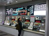 2013春賞櫻8日行***DAY3 醍醐寺→金閣寺→平野神社:1541713058.jpg