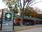 2013.12月東京生日之旅DAY1:P1160815.JPG