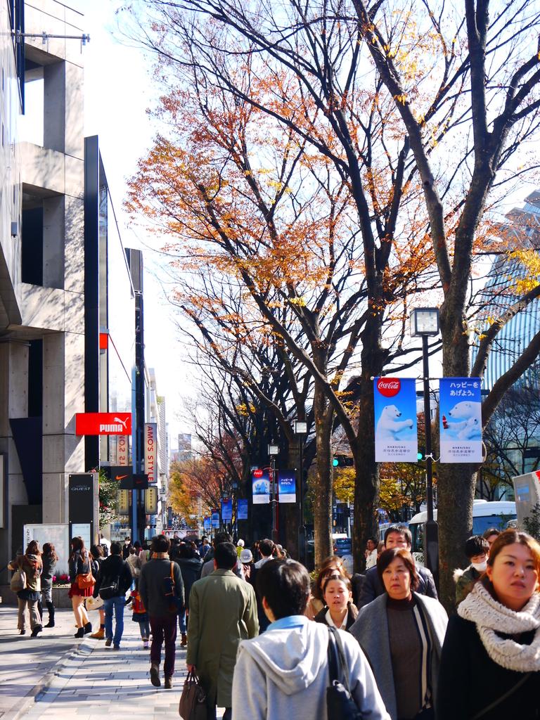 2013東京生日之旅DAY3 外苑→明治神宮→代官山→自由之丘:P1170548.JPG