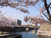 **春賞櫻8日行***Day8 大阪城→台灣:1230550005.jpg