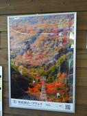 2014日本四國浪漫之旅day2高松→小豆島:P1170881.JPG