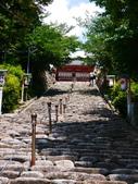 2014日本四國浪漫之旅DAY6松山城→道後溫泉周邊:P1180978.JPG