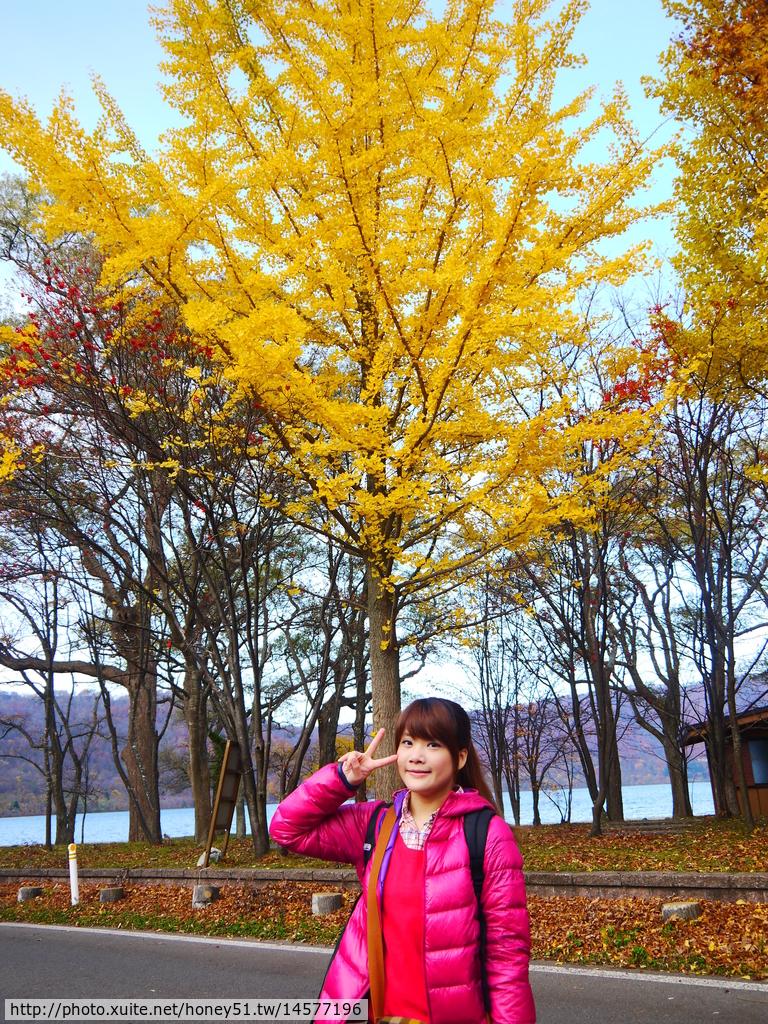 2013日本東北紅葉鐵腿行Day3田澤湖→乳頭溫泉鄉:P1130234.JPG