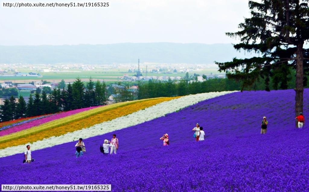 2014夏‧北海道家族之旅DAY2富良野→富田農場:P1200027.JPG