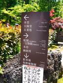 2014初夏四國浪漫之旅day4 高知城→桂濱:P1180680.JPG